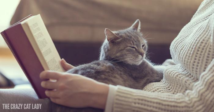 10 Inspirational Cat Books
