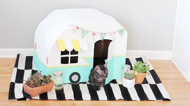 Cardboard Cat Camper by Cuteness
