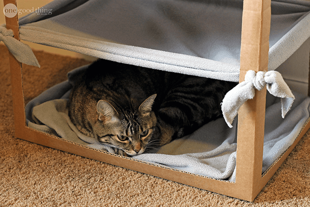 Cardboard Cat Hammock from One Good Thing by Jillee