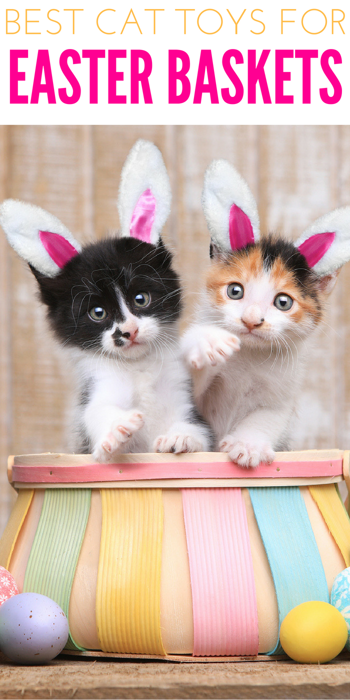 If you're looking for the best cat toys for Easter, look no further than these awesome choices! #CatCare #CrazyCatLady #CatGifts best cat toys