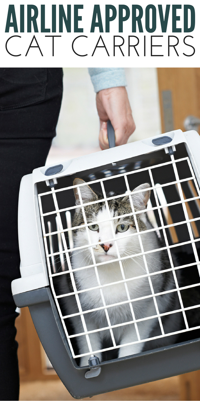#CatCare #CrazyCatLady #TravelwithCats airline approved pet carriers